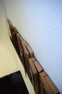 2013-02-15-05-deck-wood-wall-bookshelf